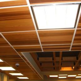 Silva Panel - Ceiling Work - 04