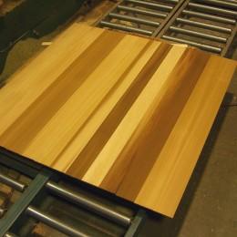 Silva Panel - Custom - 01